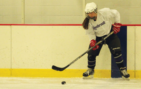 Dominant hockey team aims for state title