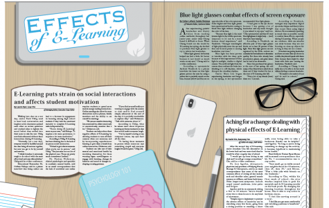 Effects of E-Learning